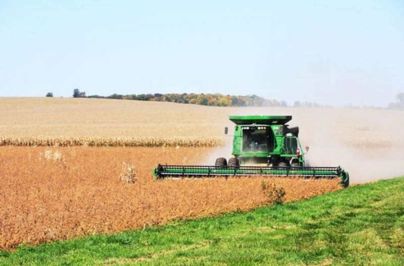China to Import More US Soybeans